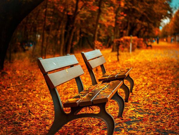 Холод и сырость: какая погода ждет ростовчан в воскресенье, 22 сентября