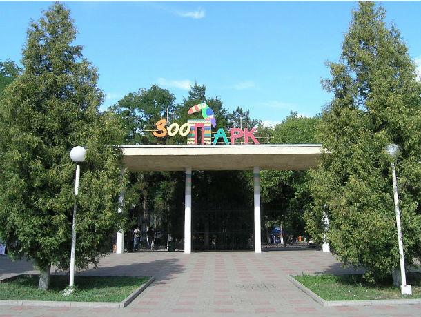 Календарь: день рождения отмечает ростовский зоопарк