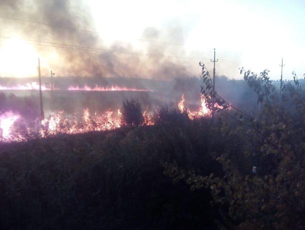 Под Ростовом тушат крупный ландшафтный пожар