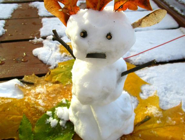 Обрадовавшиеся зимней метели ростовчане налепили ужасных и забавных снеговиков
