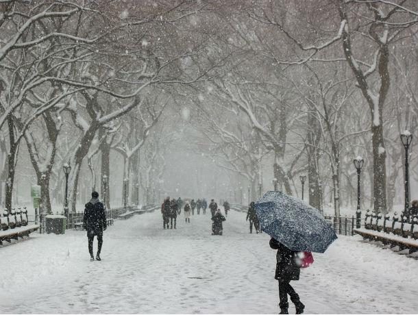 Сильнейший снегопад обрушится в ближайшие часы на Ростовскую область