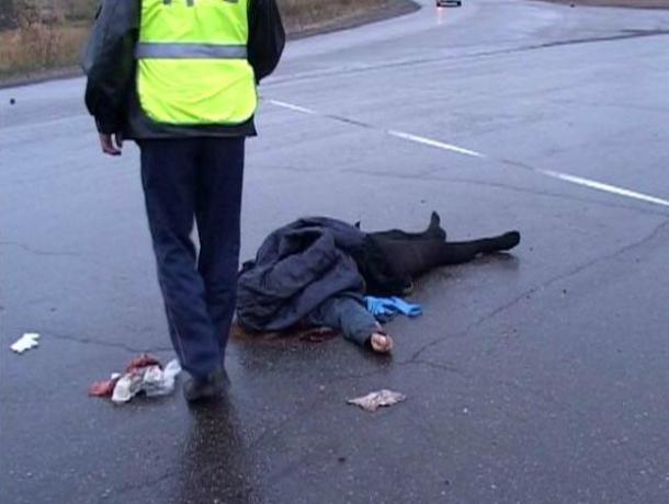 Натрассе М4 вВоронежской области женщина погибла под колесами микроавтобуса