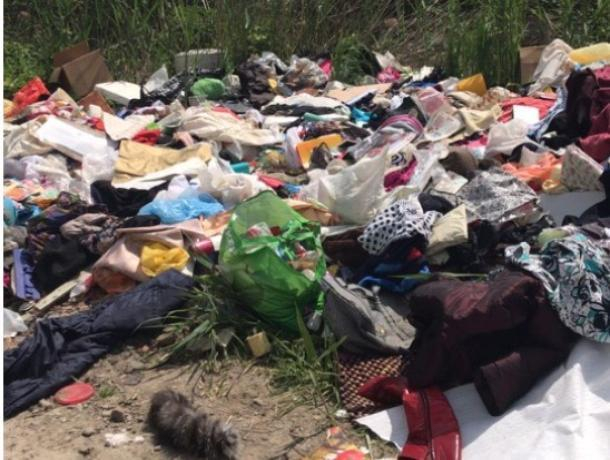 В Ростове берег Дона превратили в огромную свалку мусора