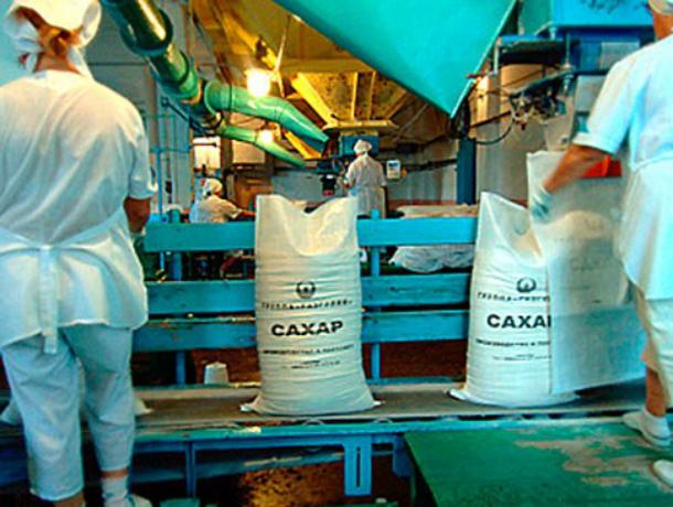 ВРостовской области построят мощный сахарный завод