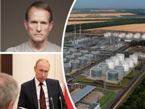 Владелец нефтеперерабатывающего завода под Ростовом оказался кумом Владимира Путина
