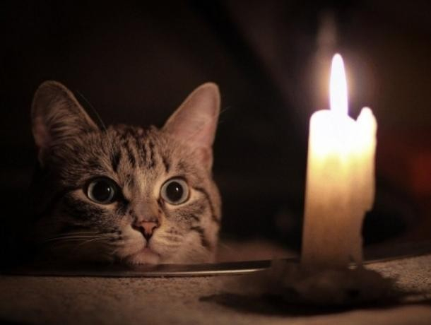 Тысячи ростовчан вновь останутся без света на следующей неделе