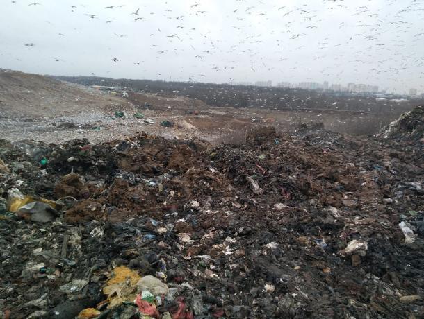 Власти Ростова восемь лет просили губернатора Голубева решить проблему свалки в Левенцовке