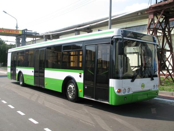 Из-за резкого торможения автобуса №6 пострадала 64-летняя пассажирка