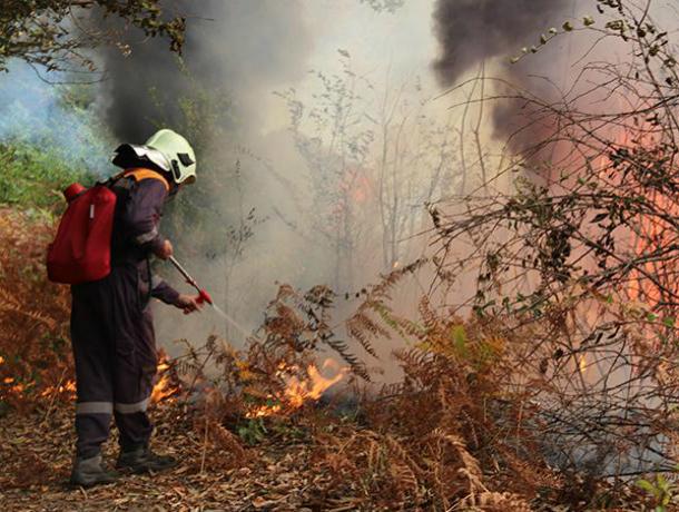 С1 по3мая вРостовской области предполагается высокая пожароопасность— МЧС