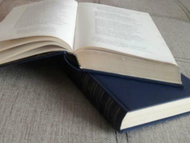 Первое научное печатное издание «Тихого Дона» представили вРостове-на-Дону