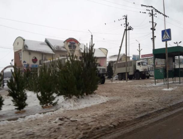 Восточный Темерник в Ростове «масштабно» блокировали бойцы Росгвардии