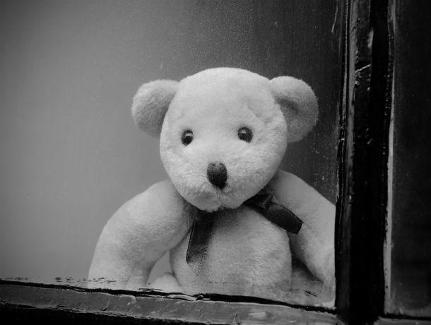 Жителя Ростовской области признали виновным в убийстве пятилетней девочки
