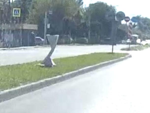 «Умывальники» на разделительной полосе крупной автодороги в Ростове озадачили водителей