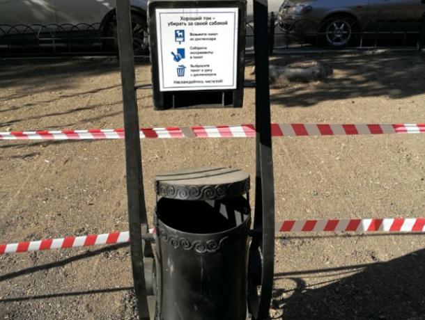 Специальные урны для владельцев собак установили после посева нового газона на Пушкинской в Ростове