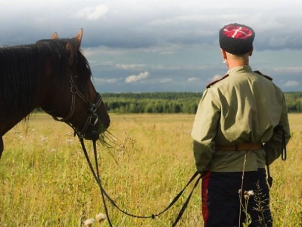 Казаков в Ростовской области заставили вернуть землю государству