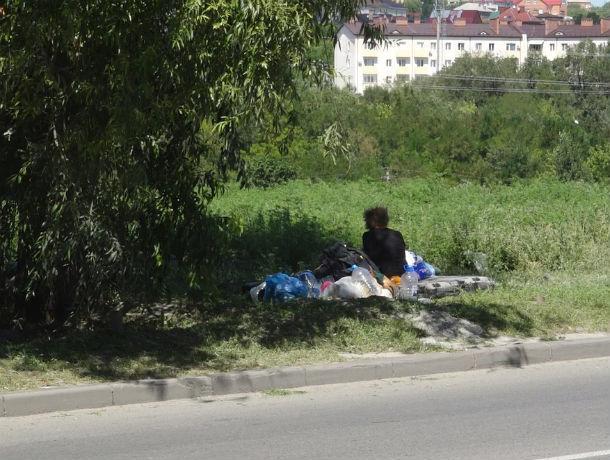Безногая бродяжка в Ростове показала характер и осталась жить под деревом вместо приюта