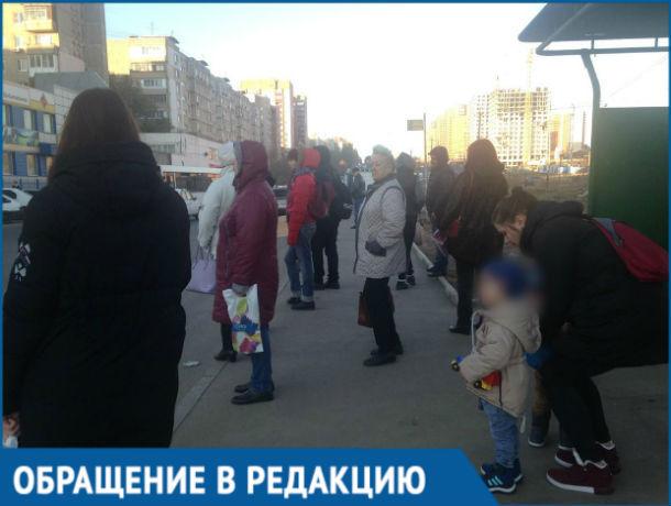 «Водители курят в автобусах, а люди - мёрзнут на остановках», - ростовчанка о транспорте