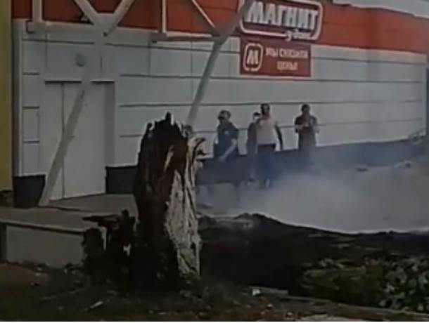 Непотушенный окурок спалил многолетнее дерево в Ростове