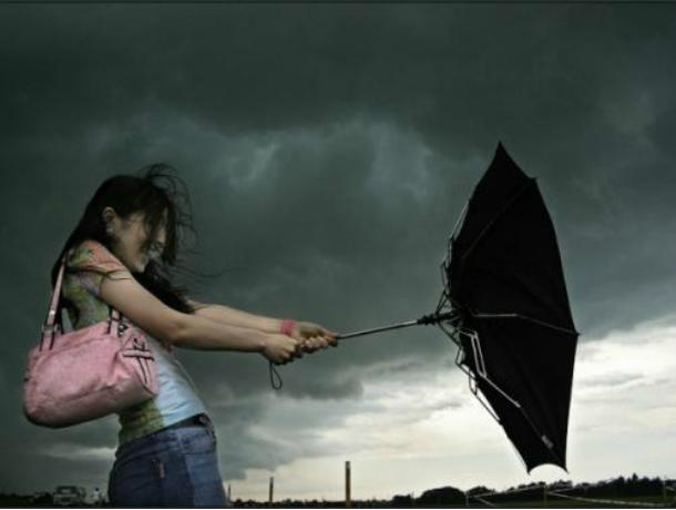 Град, шквалистый ветер, гроза: наДону вближайшие сутки ожидают шторм