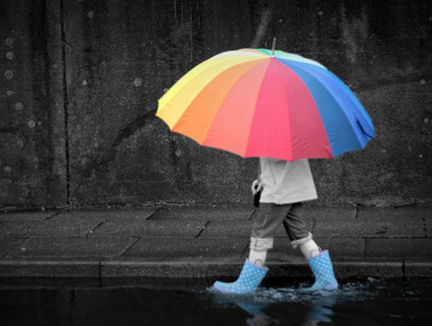 Дождливым и прохладным выдастся этот вторник для жителей Ростова