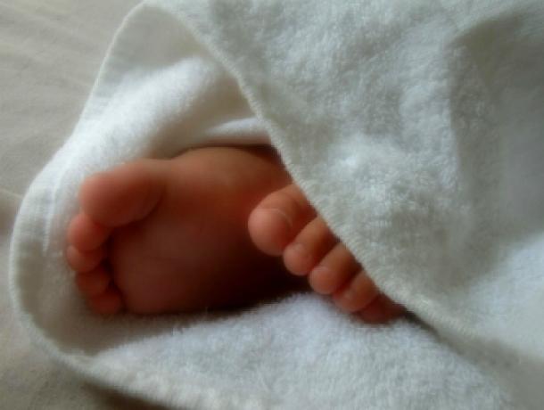 Завернутое в целлофановый пакет тело младенца обнаружили на съемной квартире в Ростовской области