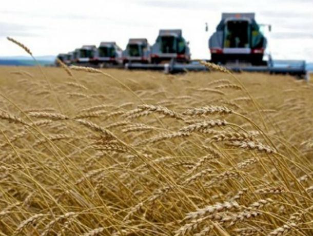 Более 160 льготных инвестиционных кредитов для предприятий АПК на Юге одобрил Сбербанк