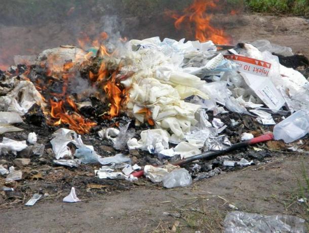 «Сгорим к чертям всем селом»: ростовчане доходчиво объяснили соседям о вреде свалок в зеленых рощах