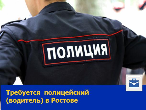 Полицейский, полицейский (водитель)
