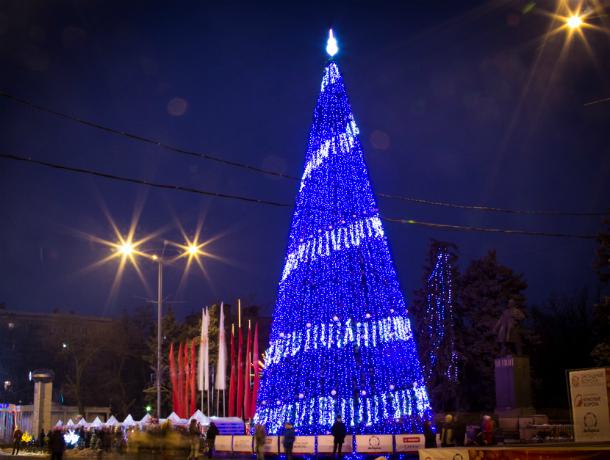 Главная ростовская елка обойдется донским властям в 750 тысяч рублей