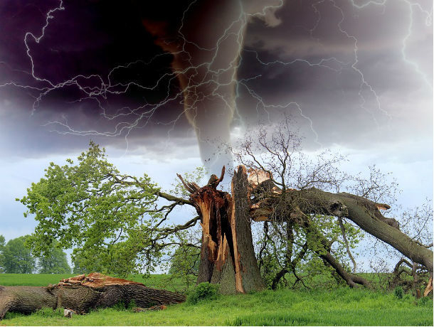 На Ростов надвигается ураганный ветер: в южной столице объявлено штормовое предупреждение