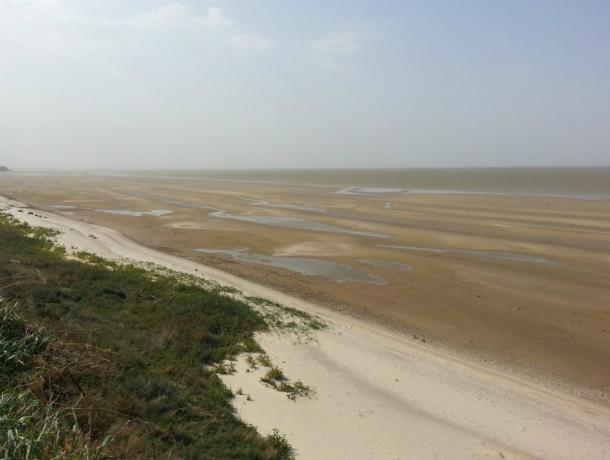 Разбушевавшийся в Ростовской области ураганный ветер частично осушил Таганрогский залив
