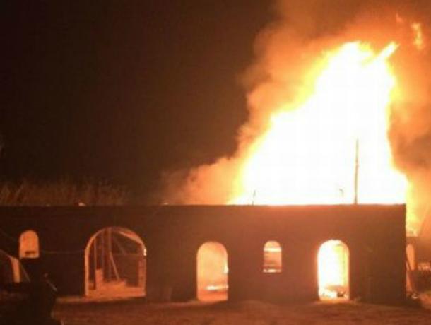 Владелец сгоревшей конюшни объявил награду за информацию о поджигателях в Ростове