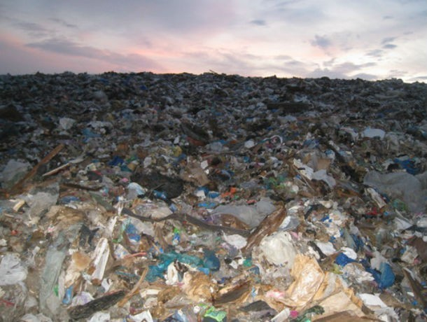 Строительство мусорного завода в ростовской Левенцовке запретили военные