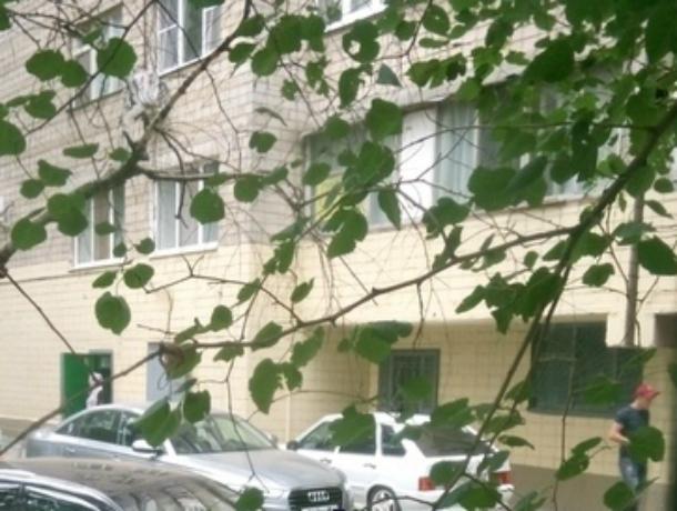 Вредными советами засыпали оскорбленную шумным автомобилистом молодую мать жители Ростова