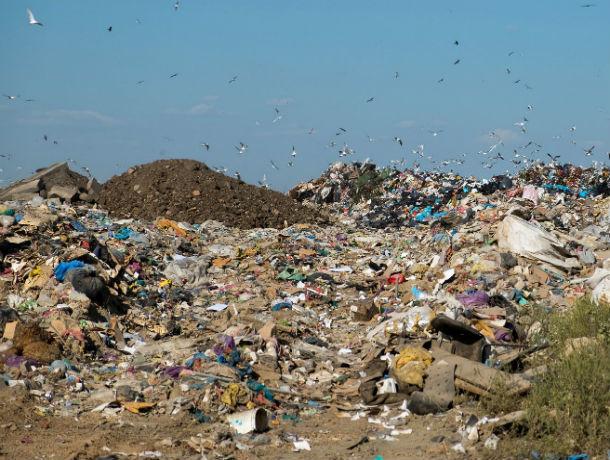 Вместо мусороперерабатывающего завода в Левенцовке появится еще одна свалка
