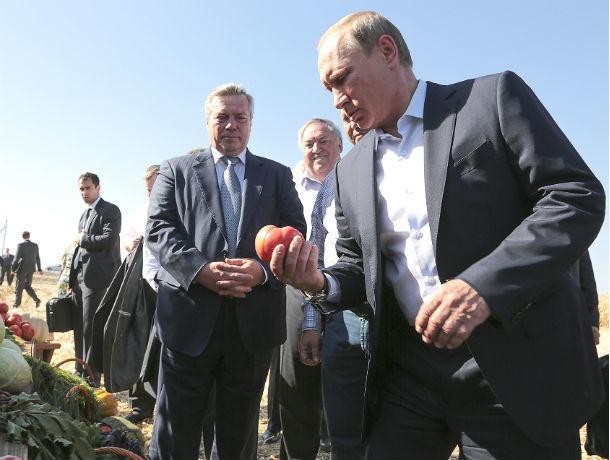 В кадровом резерве президента РФ нет ни одного представителя Ростовской области
