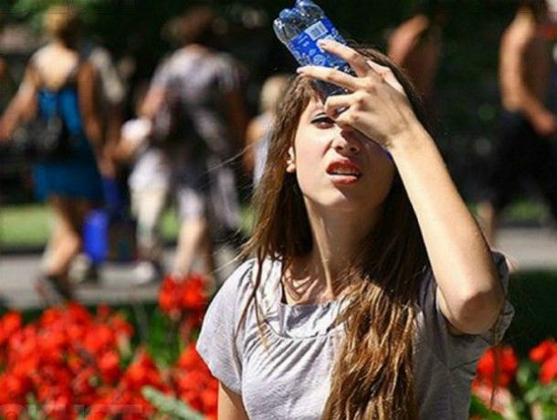 Солнечная и практически безветренная погода ожидает жителей Ростова в этот понедельник