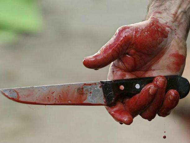 Гражданин Ростовской области зарезал сожительницу— Нож вспину