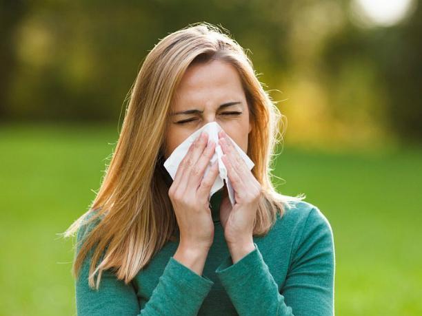 Карту мерзкой пыльцы разработали для страдающих аллергией ростовчан