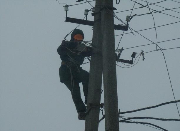 Чрезвычайный режим работы из-за сильного ветра «включили» энергетики Ростова