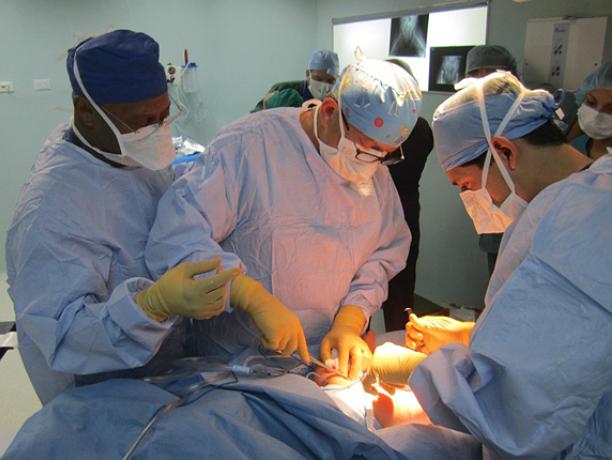Мучительные опухоли печени и поджелудочной обсудят ростовские и южнокорейские врачи