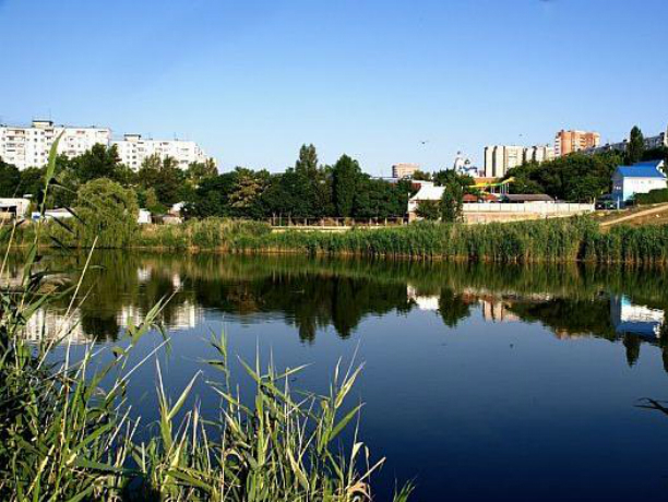 Микробы захватили реки Дон и Темерник в шести местах Ростова
