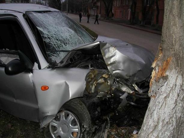 Виновник аварии в Ростове бросил погибать пассажира после тарана дерева
