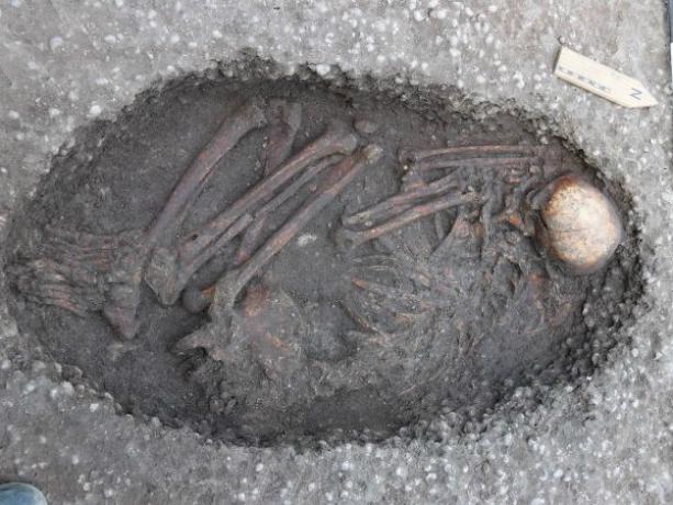 Пугающие останки древнего человека нашли в могиле под Ростовом