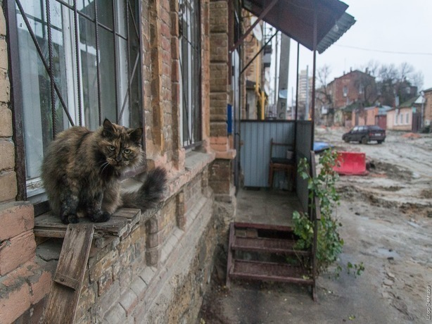Ростовчане утопают в грязи и «ломают ноги» в самом центре столицы
