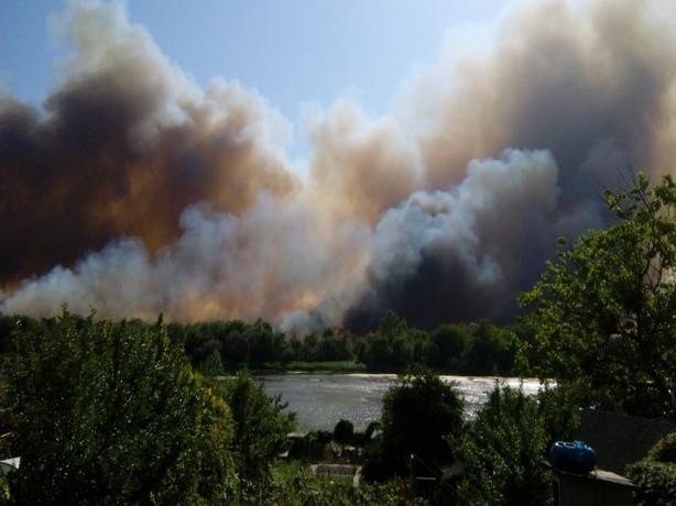 Площадь пожара в Кумженской роще в Ростове увеличилась до 5,5 Га