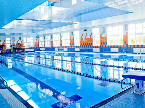 Новые спорткомплексы с бассейнами возведут в Ростовской области за семь лет
