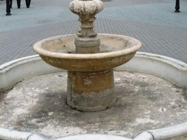 Высушенные фонтаны и сухие дубы в парке Горького активистка назвала безобразием и позором Ростова