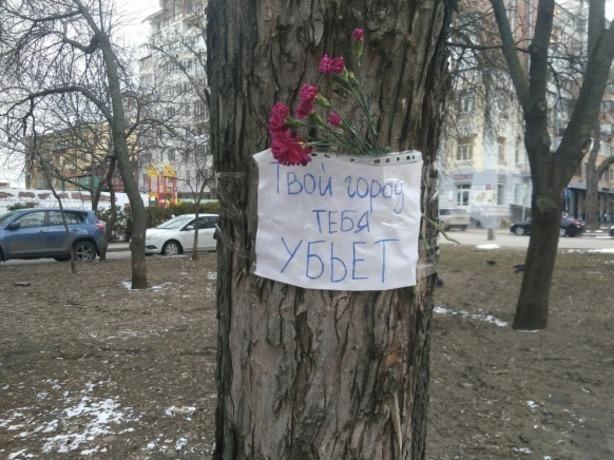 Убившее 21-летнюю девушку в Ростове дерево было признано безаварийным и безопасным