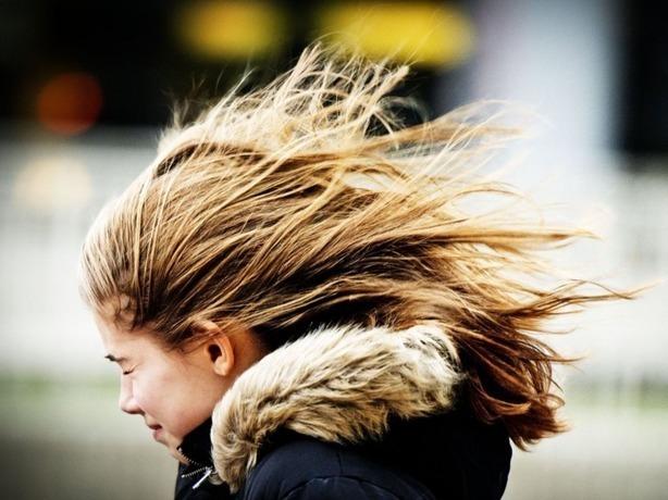 Управление по делам ГО и ЧС Ростова предупреждает о штормовом ветре и мокром снеге